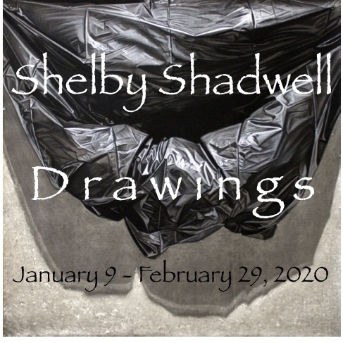 Shelby Shadwell